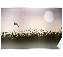 ABOVE THE TALL GRASS Poster