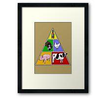 Manly Food Pyramid Framed Print