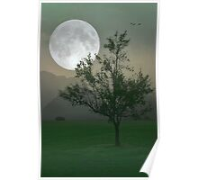 MOONLIGHT ON THE PLAINS Poster