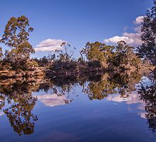 Reflection  -  Narcissis River  by Ron Finkel