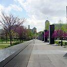 Bicentennial Mall - Spring bloom by jeffrey freeman