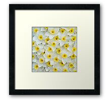 Spring is here II Framed Print