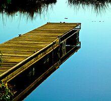 A Delta Dock by Barbara  Brown