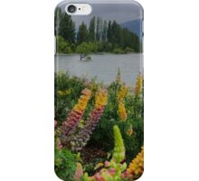 Lupin Colour at the Wanaka Tree ( 3 iPhone Case/Skin