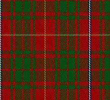 00107 Bruce County District Tartan Fabric Print Iphone Case by Detnecs2013