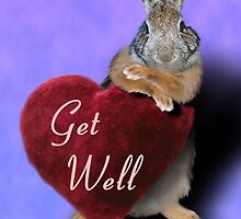 Get Well Bunny Rabbit by jkartlife