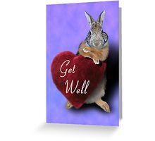 Get Well Bunny Rabbit Greeting Card