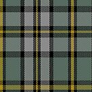 00110 Cape Breton District Tartan Fabric Print Iphone Case by Detnecs2013