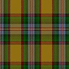 00111 Essex County Tartan Fabric Print Iphone Case by Detnecs2013