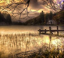 On golden Loch by Fe Messenger