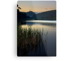 Before an Evening Swim on the Thurra River Metal Print