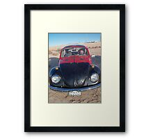 Lady Beetle Man Framed Print