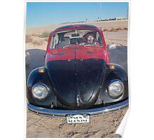 Lady Beetle Man Poster