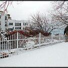 Winter Season © by Dawn M. Becker