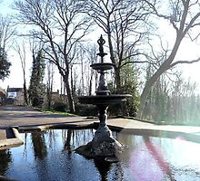 Arboretum by MollieKnight