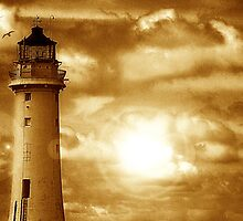 Lighthouse Collaboration in Brown by DavidWHughes