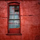 Old Red Wall by Charles & Patricia   Harkins ~ Picture Oregon