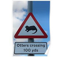Otters crossing Poster