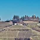 Church among the Vineyards by Roland Pozo