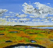 Summer sky over the wetlands by billimaus
