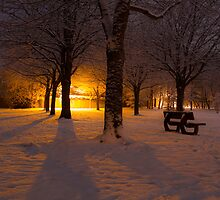 Gildredge park snow light by willgudgeon