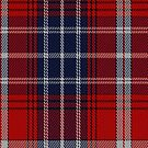 00148 Missouri District Tartan Fabric Print Iphone Case by Detnecs2013