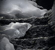 Frozen Waves by Barbara Gerstner