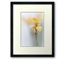 To complete... Framed Print