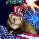 Fourth Of July Ferret by jkartlife