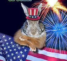 Fourth Of July Bunny Rabbit by jkartlife