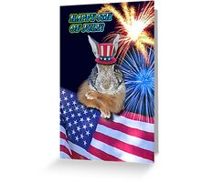 Fourth Of July Bunny Rabbit Greeting Card