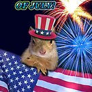 Forth Of July Squirrel by jkartlife