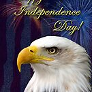 Independence Day Eagle by jkartlife