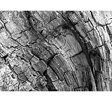 Wood Mosaic BW Photographic Print