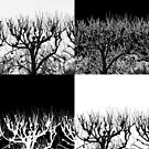 Barren Trees by Tamarra