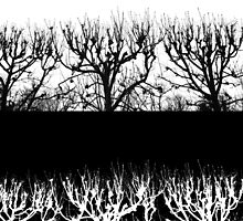 Tree Collage by Tamarra