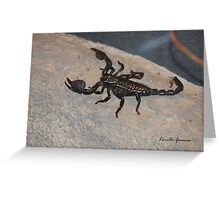 Black Scorpion Greeting Card