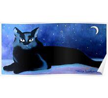 Starry Night II Poster