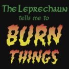 The Leprechaun Tells Me to Burn Things by shirtypants