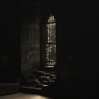 Kirkstall Abbey Chapter house by Tim Waters