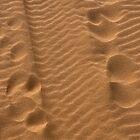 Tracks in the Sand by Karen  Betts