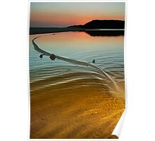 Great Water Serpent Manifests at Wingam Inlet Poster