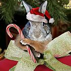 Christmas Bunny Rabbit by jkartlife