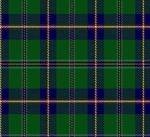 00165 Washington State District Tartan Fabric Print Iphone Case by Detnecs2013