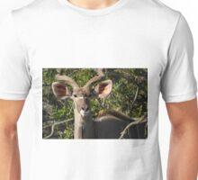 Nyala, South Africa Unisex T-Shirt