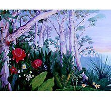 Blue Mountains Mural Photographic Print