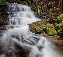 Falls on Betts Vale Track, Mount Wellington #3 by Chris Cobern