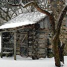 Winter Retreat © by Dawn M. Becker