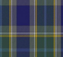 00182 Manx Hunting District Tartan Fabric Print Iphone Case by Detnecs2013
