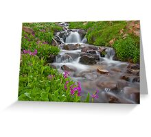First Creek in the Colorado Rockies, Grand County, Colorado Greeting Card